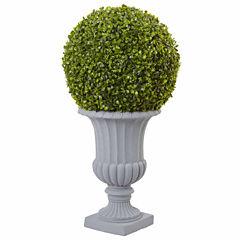 2.5' Boxwood Topiary