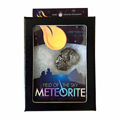 Copernicus Field of the Sky Meteorite