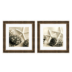 PTM Images™ Starfish & Urchins Canvas Wall Art Collection