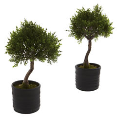 Nearly Natural Cedar Bonsai With Planter Set Of 2