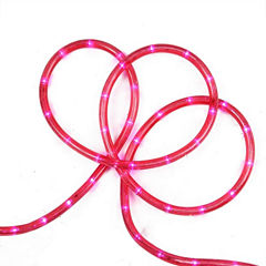 18' Pink LED Indoor/Outdoor Rope Lights with 2