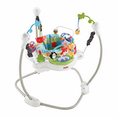 Fisher Price Discover and Grow Jumperoo