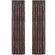 Queen Street® Raphael 2-Pack Curtain Panels