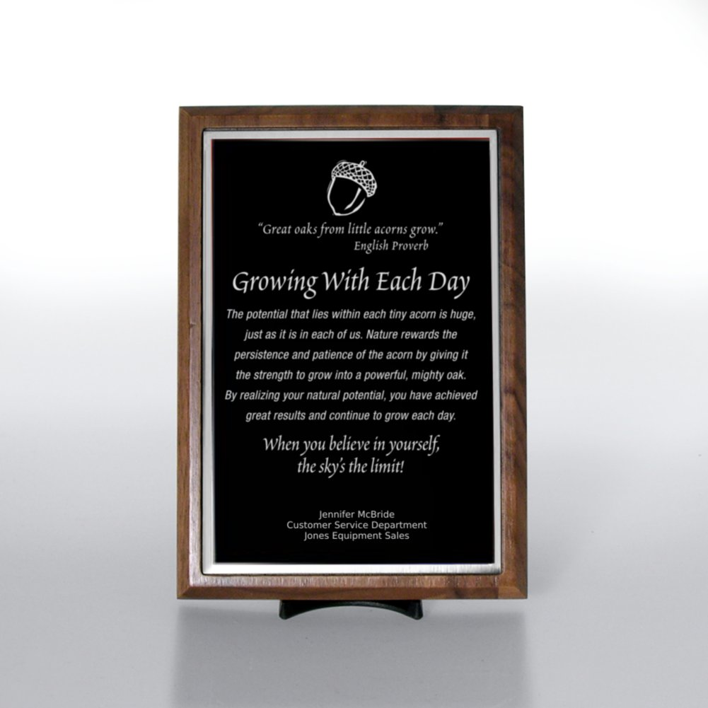 View larger image of Character Award Plaque - Half-Size - Black w/ Silver