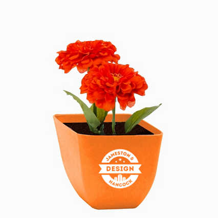 Add Your Logo: Let it Grow Flower Kit