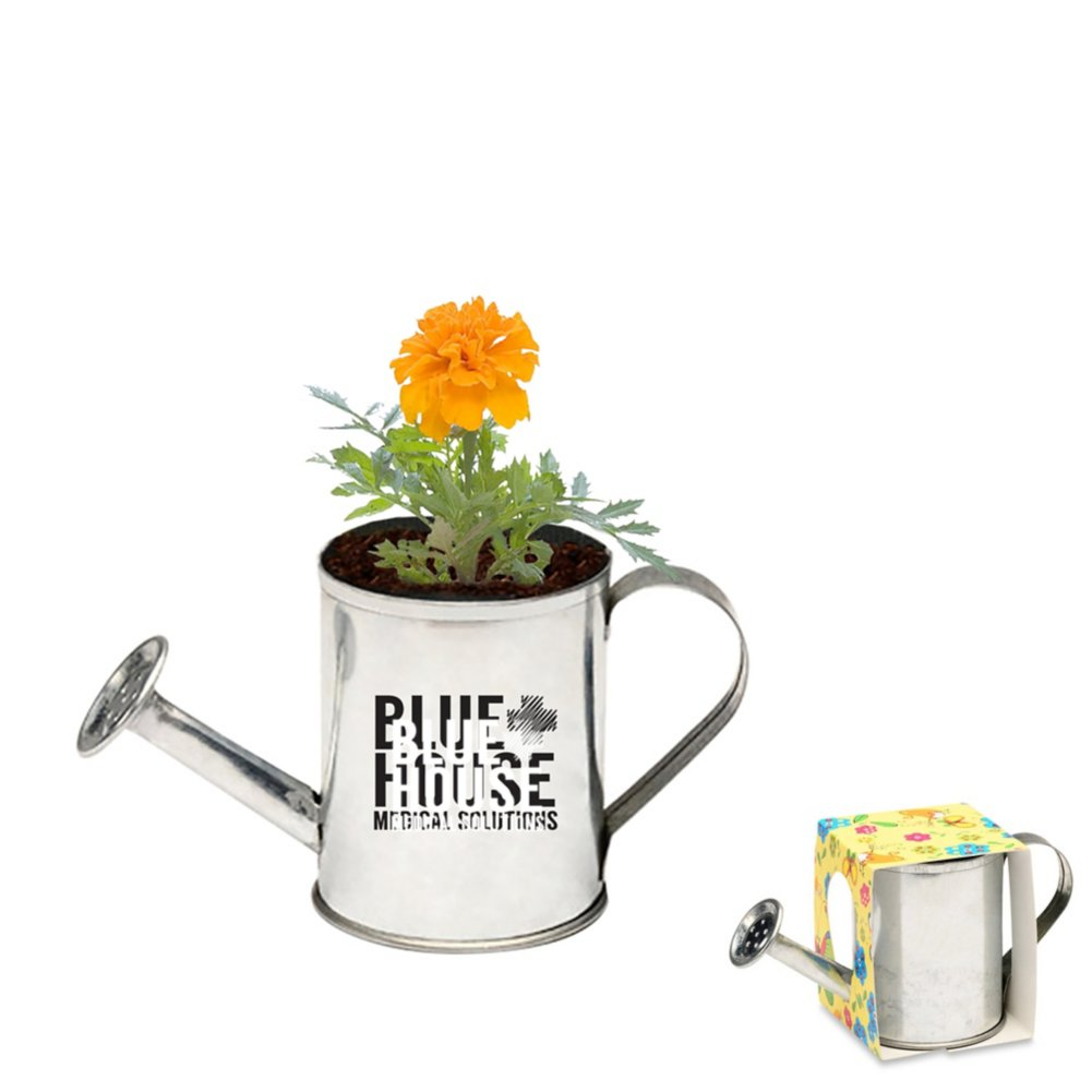 View larger image of Add Your Logo: Watering Can Planter
