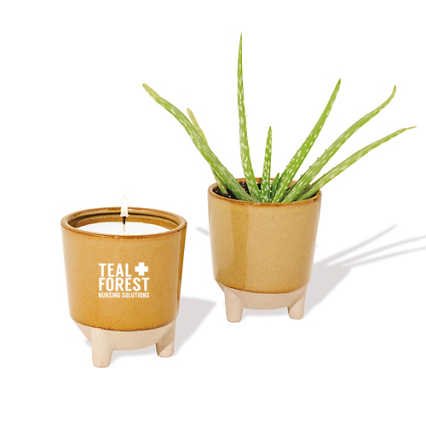 Add Your Logo: Modern Sprout Candle and Planter Gift Set