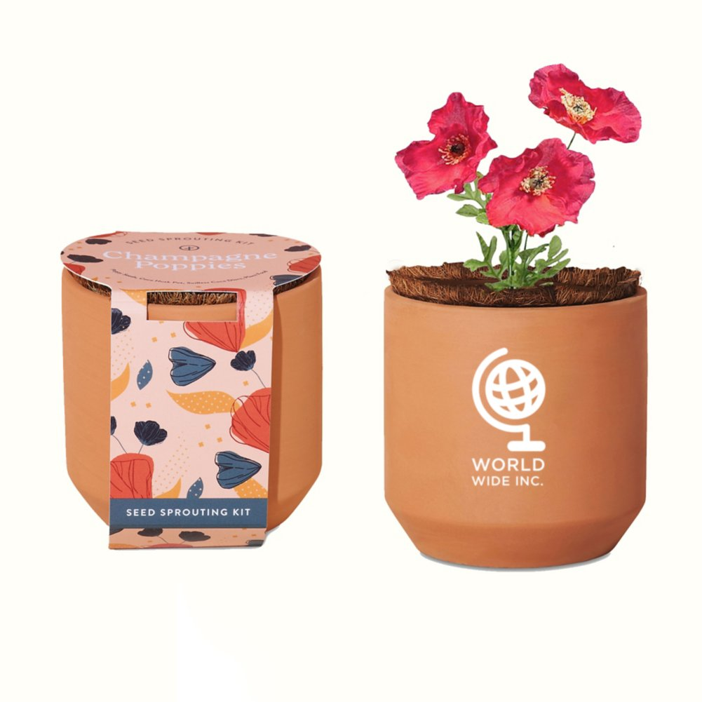 View larger image of Add Your Logo: Modern Sprout® Tiny Terracotta Grow Kit