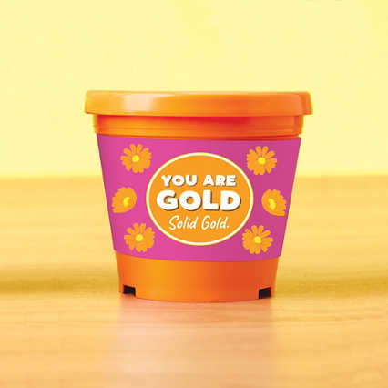 Color Pop Planter - You are Gold Solid Gold
