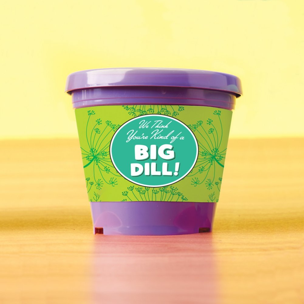 View larger image of Color Pop Planter - Kind of a Big Dill
