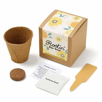Growable Praise Plant Kit - Rootin For You