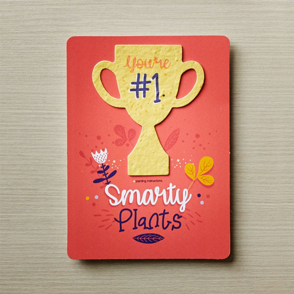 View larger image of Plantable Wildflower Award Card 5pk - You're #1