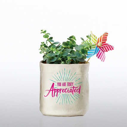 Positively Perfect Plant Holder - You Are Truly Appreciated
