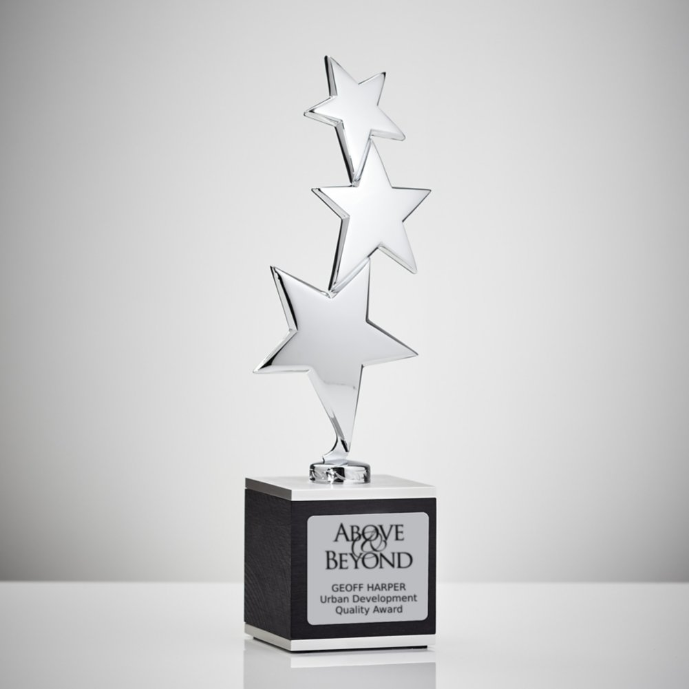 View larger image of Reach for the Stars Award
