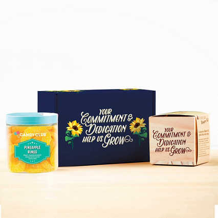 Sweet Blooms Appreciation Plant Kits - Commitment & Dedication