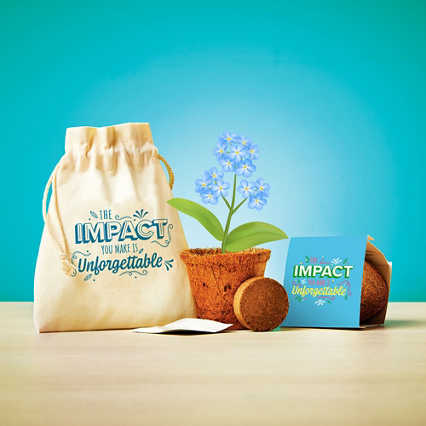Plantable Encouragement Set - Unforgettable
