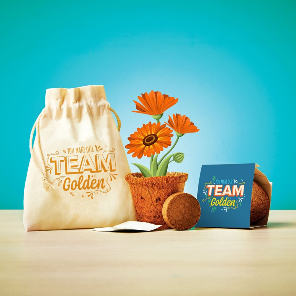 View larger image of Plantable Encouragement Set - Make Our Team Golden