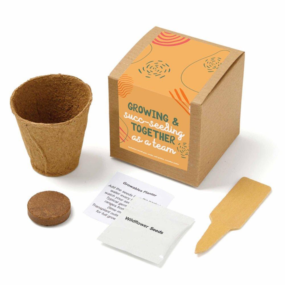 View larger image of Growable Praise Plant Kit - Succeeding