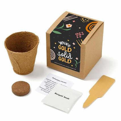 Growable Praise Plant Kit - You're Gold
