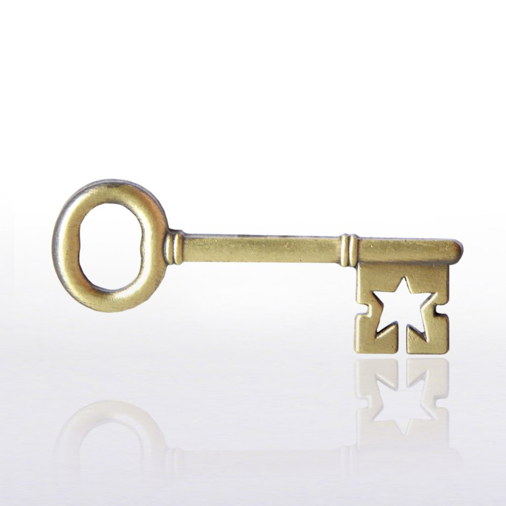 View larger image of Lapel Pin - Key To Success