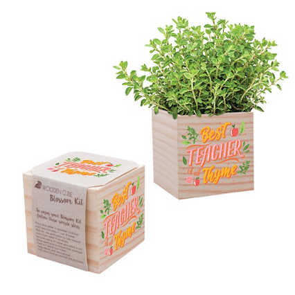 Appreciation Plant Cube - Best Teacher Of All Thyme