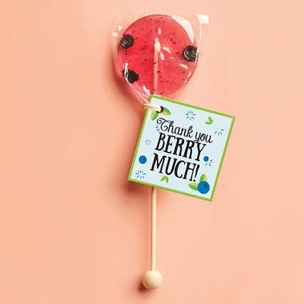Real Fruit Gourmet Lollipop - Thank You Berry Much