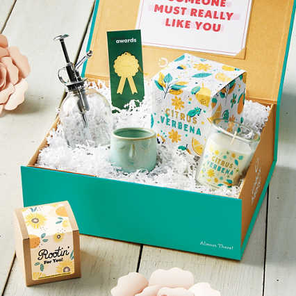 Delightly: Garden Party Kit