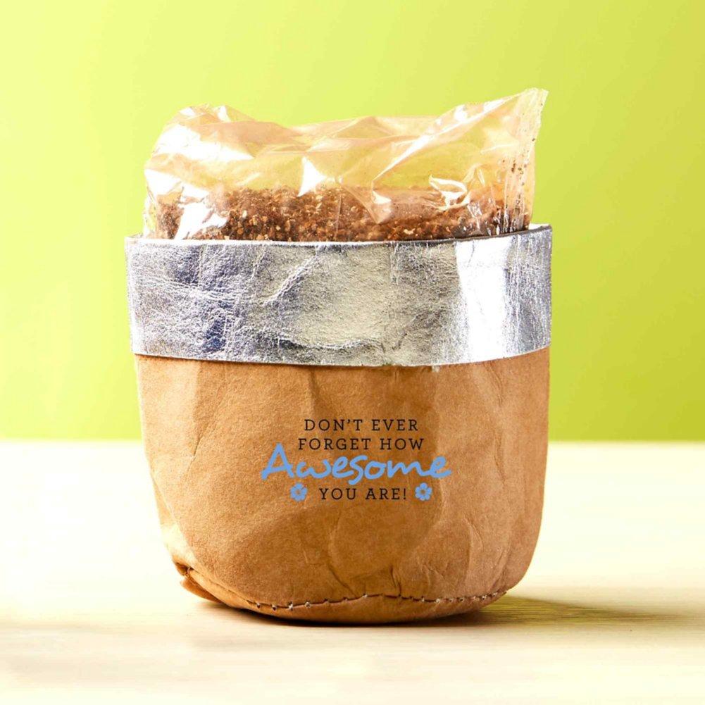 Let Appreciation Grow - Eco-Friendly Kraft Plant Bag - Awesome