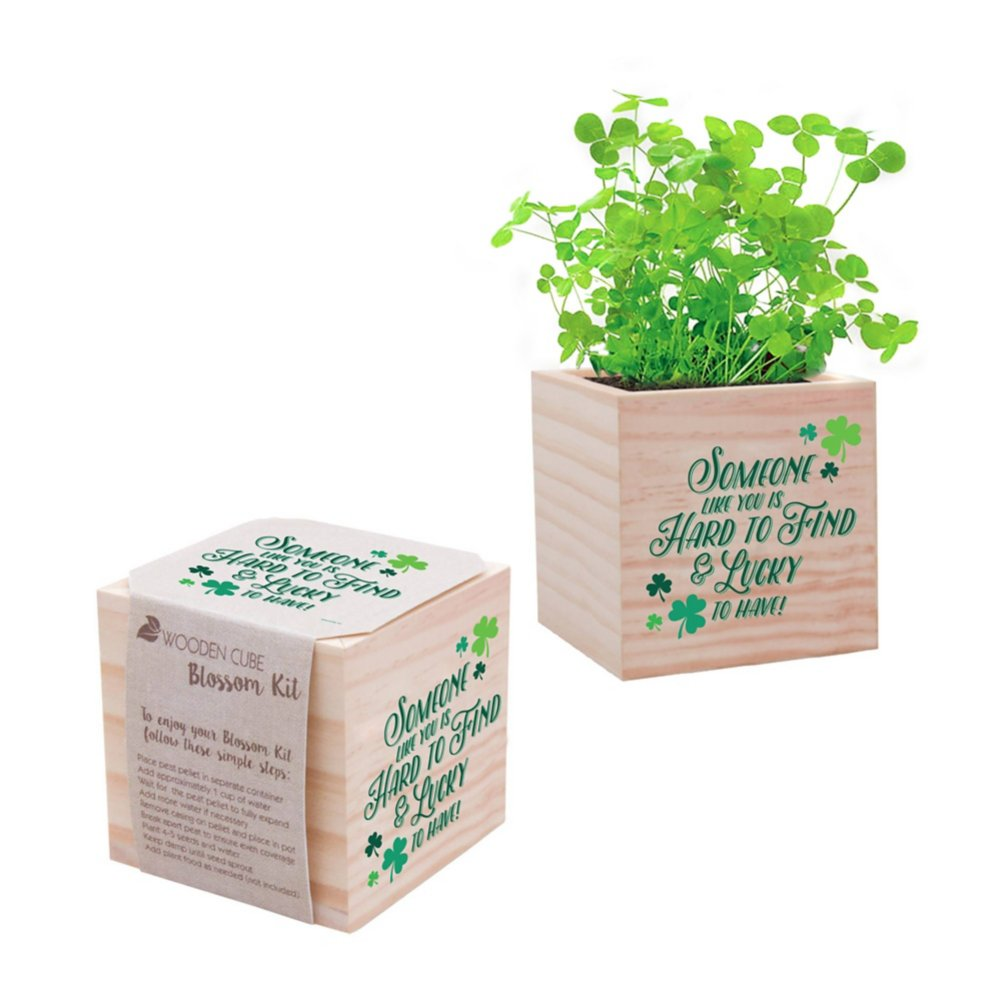 View larger image of Appreciation Plant Cube - Someone Like You is Hard to Find