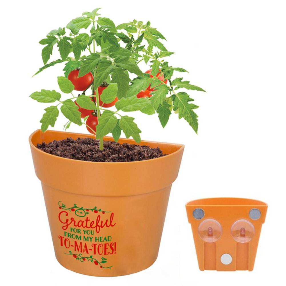View larger image of Appreciation Planter Kit - Grateful for You