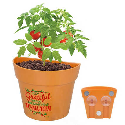 Appreciation Planter Kit - Grateful for You