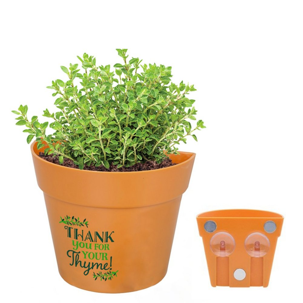 View larger image of Appreciation Planter Kit - Thank You for Your Thyme