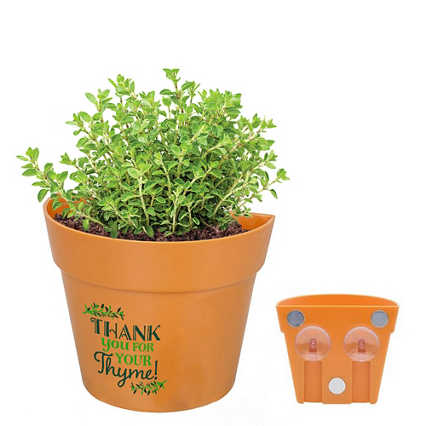 Appreciation Planter Kit - Thank You for Your Thyme