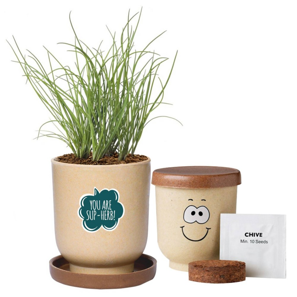 View larger image of Silly Faces Eco-Planter - Chives