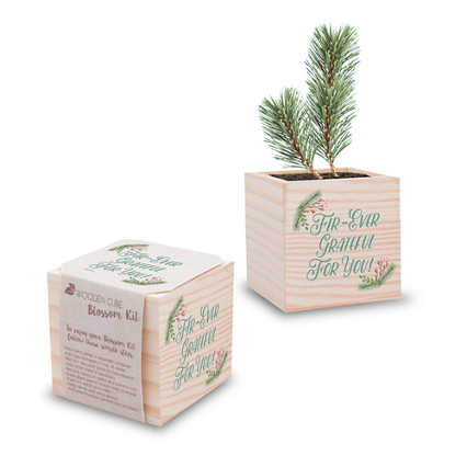 Appreciation Plant Cube - Holiday: Fir-ever Grateful