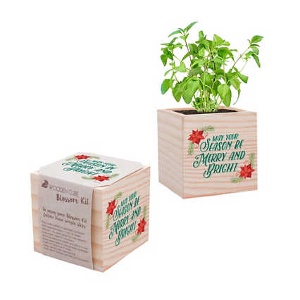 Appreciation Plant Cube - Holiday: Merry & Bright