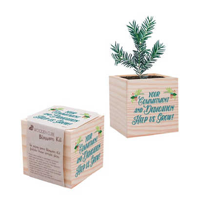Appreciation Plant Cube - Holiday: Help us Grow