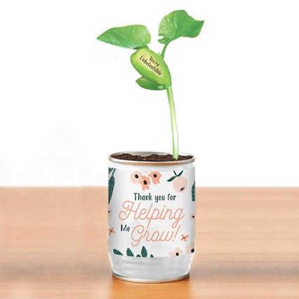 Secret Message Planter - Thank You