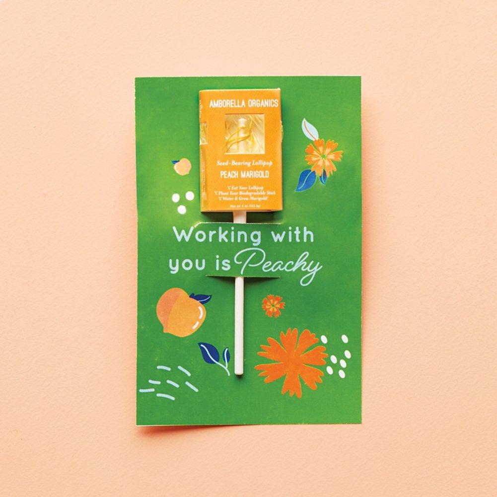 View larger image of Amborella Organics Lollipop Greeting Card - Peach Marigold