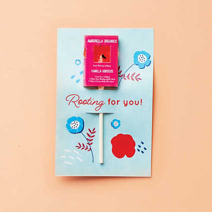 Garden Lollipop Greeting Card - Vanilla Hibiscus