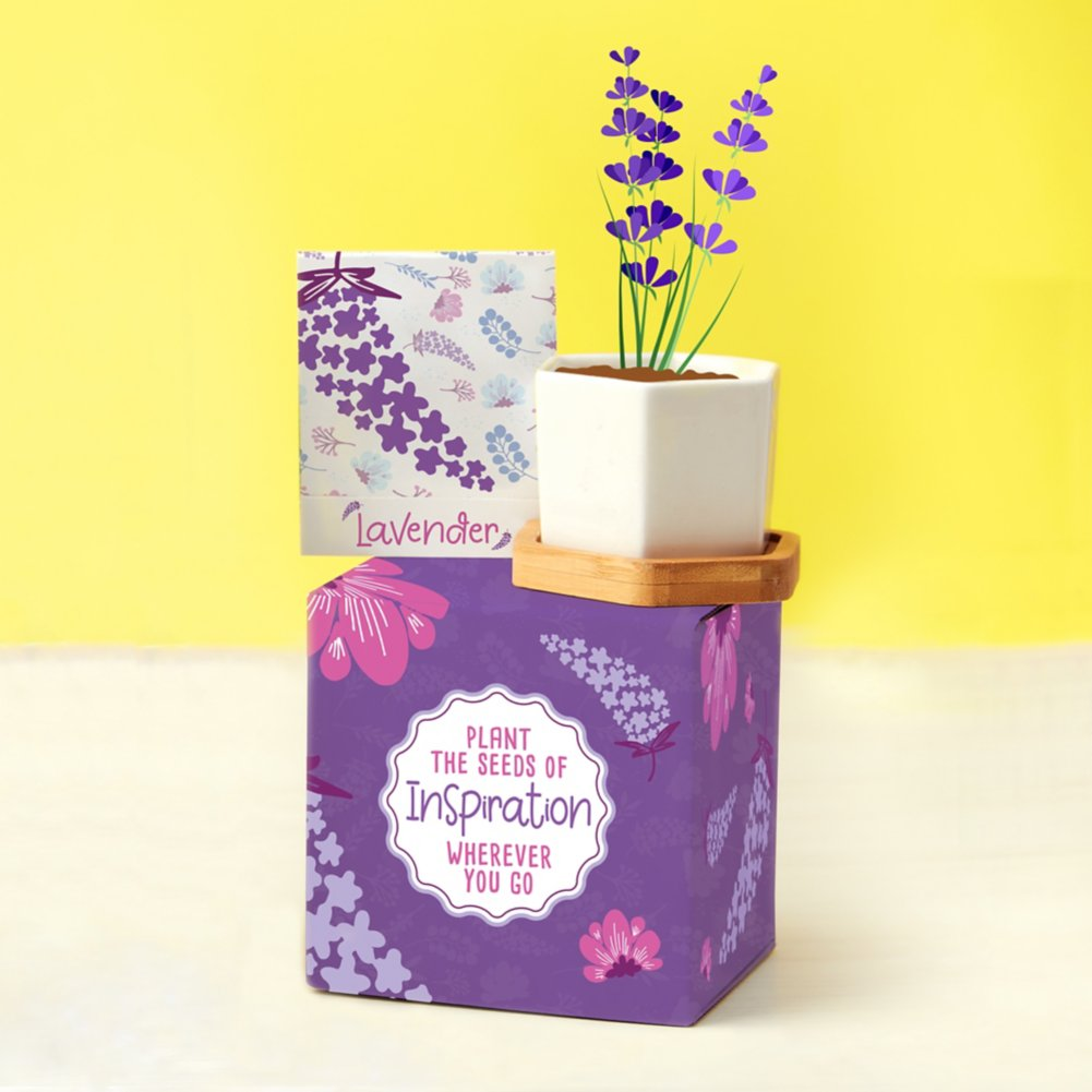 View larger image of Perfect Match Planter & Seed Set - Lavender