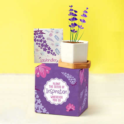 Perfect Match Planter & Seed Set - Lavender
