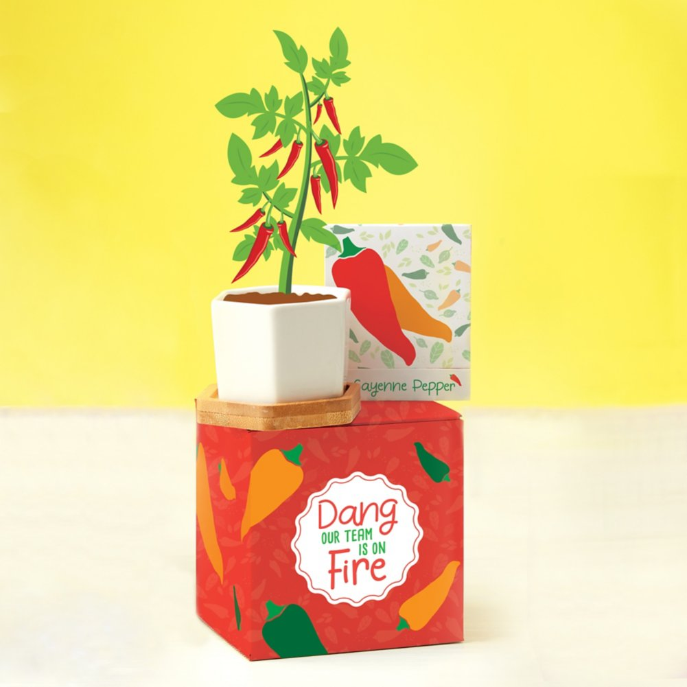 View larger image of Perfect Match Planter & Seed Set - Pepper