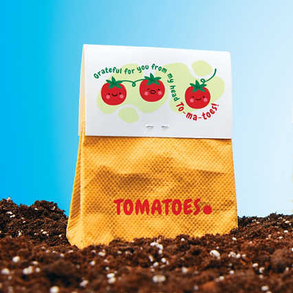 Veggie Grow Kit - Tomato
