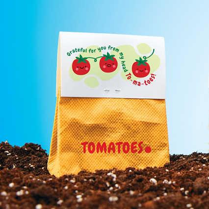 Veggie Grow Kit - Tomato