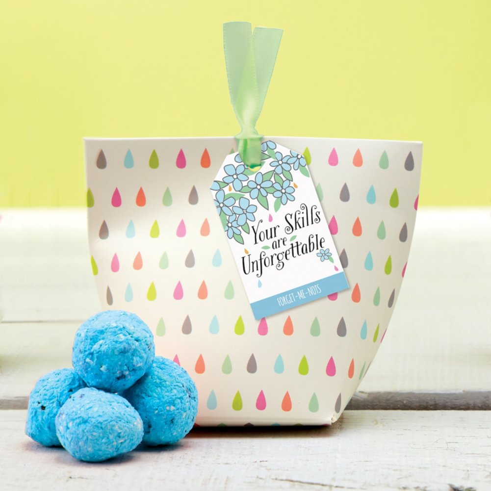 View larger image of Appreciation in Bloom Paper Pouch - Forget-Me-Not