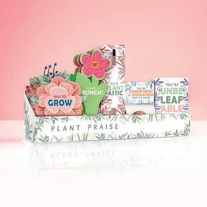 Cheers Kit - Plant Praise
