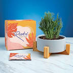 View larger image of Haven Planter + Seed Set - Rootin' for You