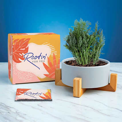 Haven Planter + Seed Set - Rootin' for You