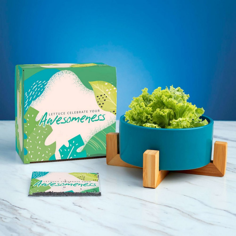 View larger image of Haven Planter + Seed Set - Celebrate Your Awesomeness